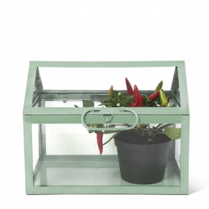 16-2-24 Tiger Garden House Metal-Glass €20